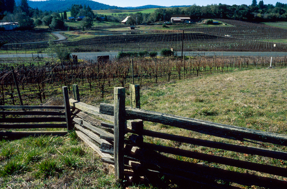 USA, Kalifornien, Anderson Valley (1999)