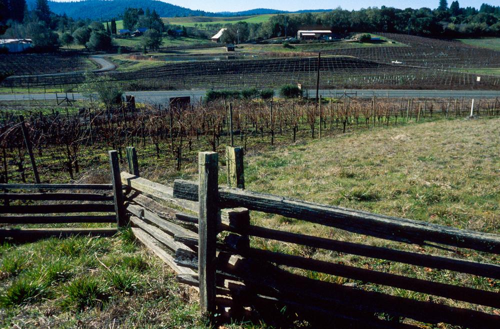 USA, Kalifornien, Anderson Valley (1999)