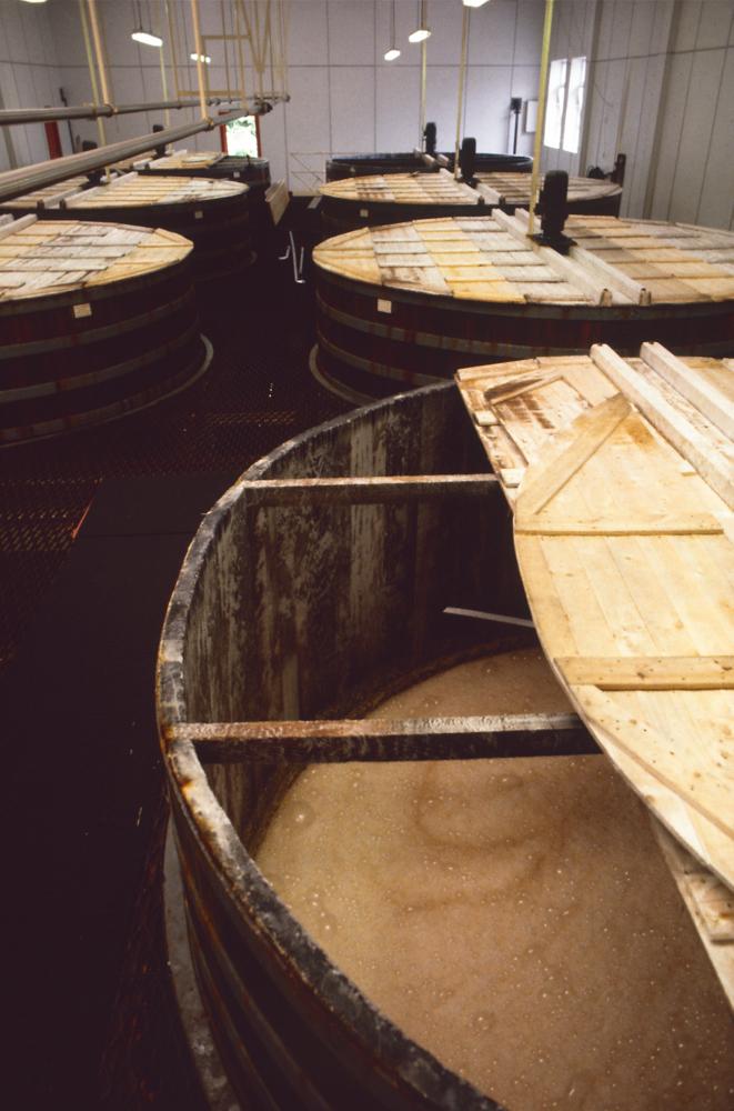 Großbritannien, Schottland, Speyside, Glen Grant Distillery, Maischebottiche (1987)