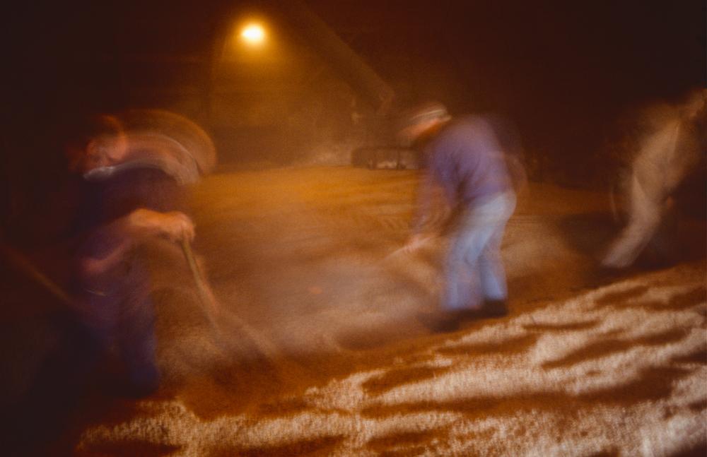 Großbritannien, Schottland, Islay, Laphroaig Distillery Arbeit auf der Darre (1987)