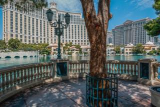 USA, Nevada, Las Vegas, Bellagio (2016)