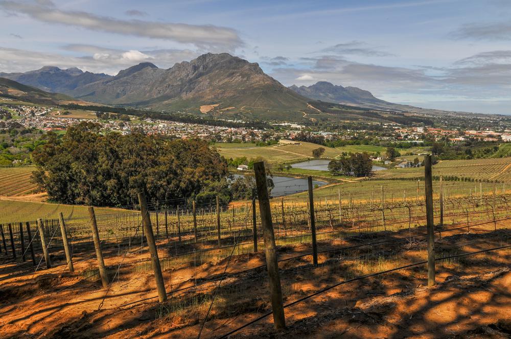 Südafrika, Stellenbosch, Glenelly Winery und Stellenbosch Mountains (2012)