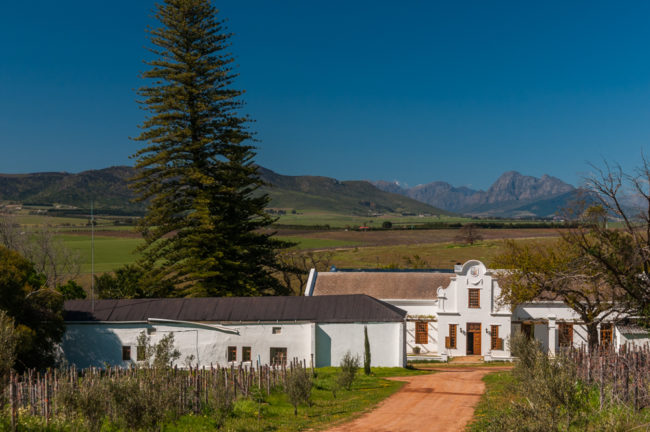 Südafrika, Swartland, Voor Pardeberg, Weingut Scali (2008)