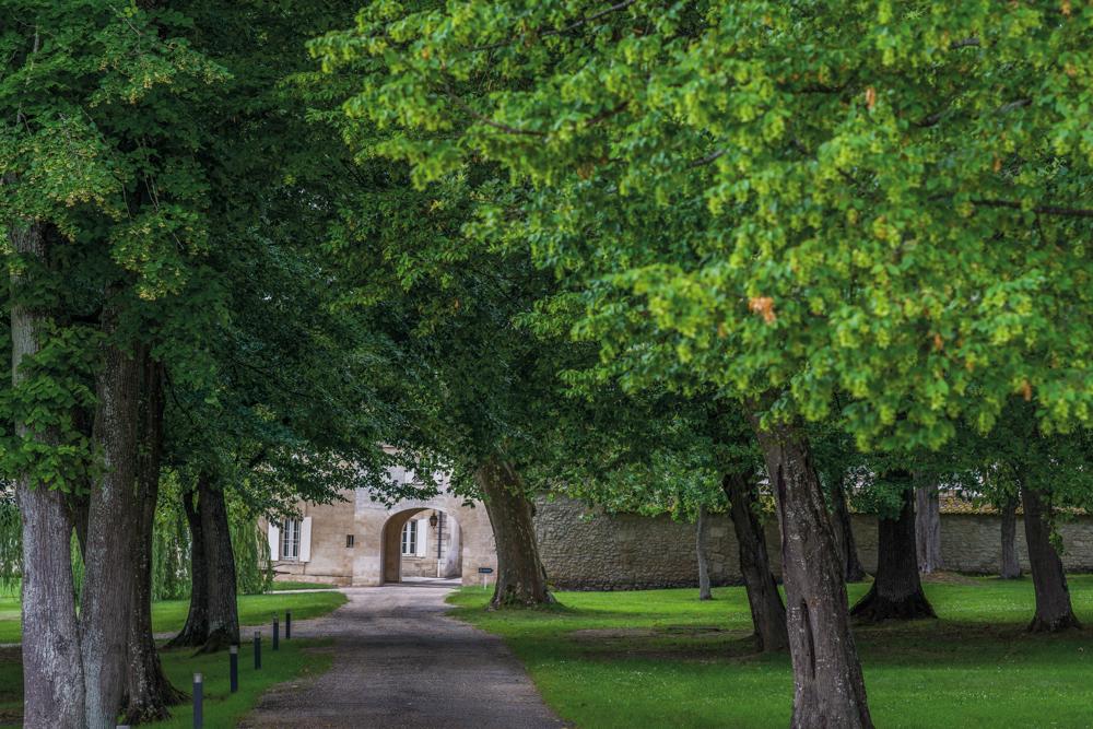 Frankreich, Gironde, Fronsac Château La Dauphine (2016)