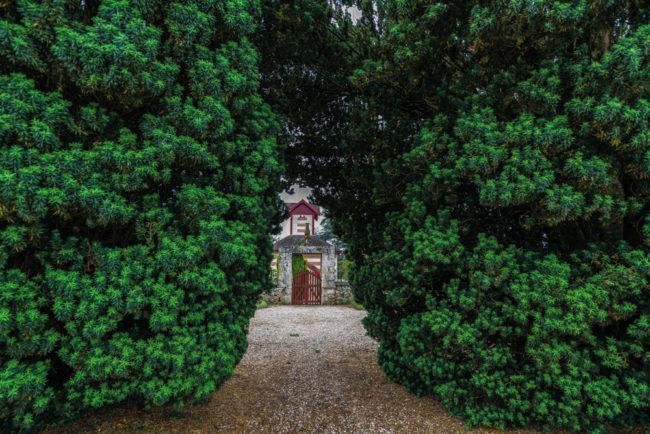 Frankreich, Gironde, Grézillac, Park von Château Bonnet (2016)