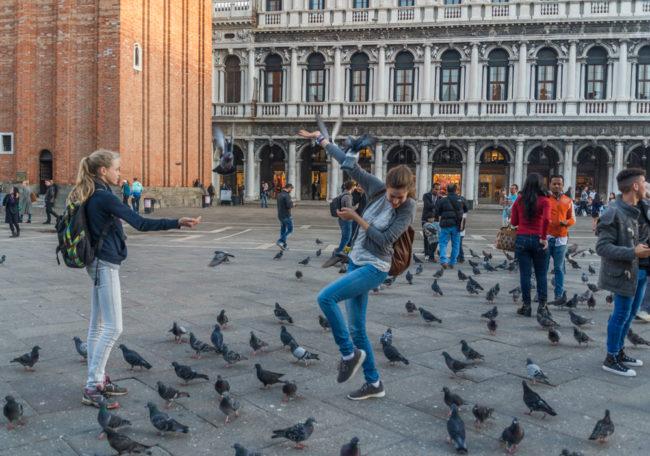 Venedig, Italien, Spiel mit den Tauben auf dem Markusplatz