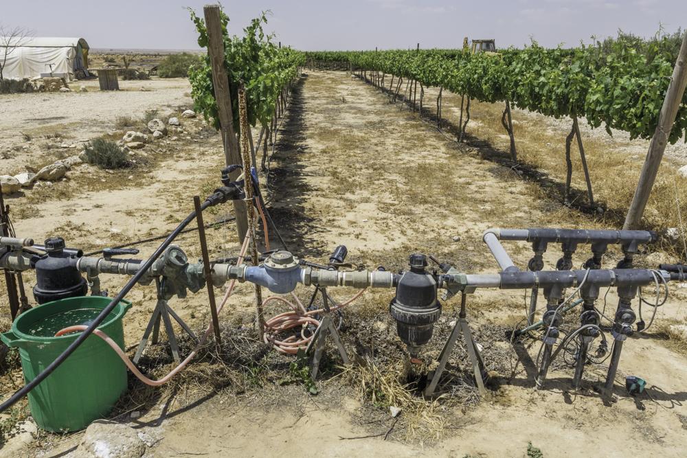 Israel, Negev, Rota Winery, Bewässerung