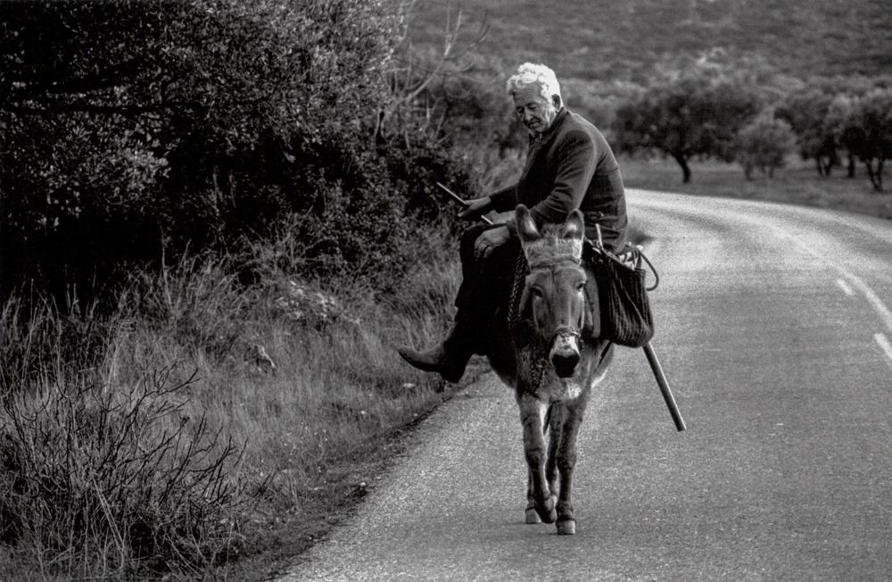 Italien, Kalabrien, Bauer auf dem Esel (1987)