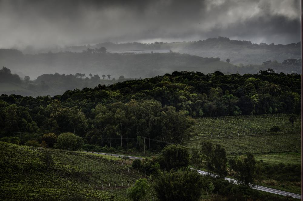 Brasilien, Rio Grande do Sul, Vale dos Vinhedos - Weinberge mit Weingut (2013)