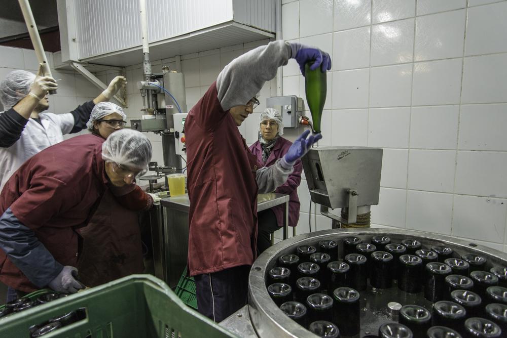 Brasilien, Rio Grande do Sul, Pinta Bandeira - Don Giovanni Winery, Degorgieren von flaschenvergorenen Sekten (2013)