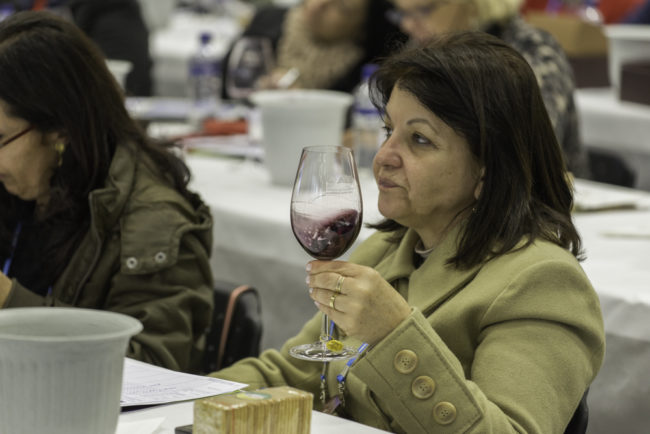 Brasilien, Rio Grande do Sul, Bento Goncalves - - Nationale Weinberwertung des Jahrgangs 2013 der brasilianischen Önologenvereinigung, Verkostung und Zeremoniell (2013)