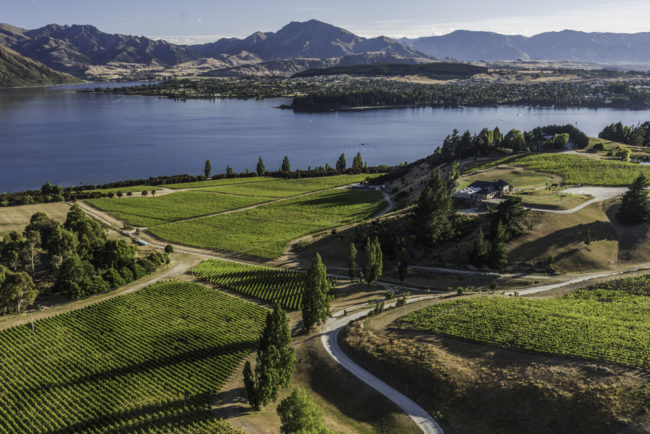 Neuseeland, Central Otago, Rippon Vineyard, Lake Wanaka - (2018)