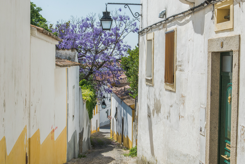 Portugal - Alentejo - Évora (2015)